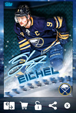 JACK EICHEL-ICE SIGNATURE 150cc BLADES-FIRE & ICE-TOPPS SKATE 19 DIGITAL