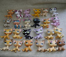 Littlest Pet Shop Short Hair Cat  series LPS 1Pcs random choice