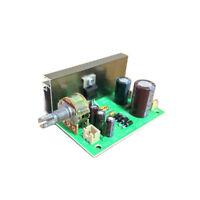 20W Mono Power Amplifier Board Finished Board Small Distortion