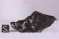 Bondoc Meteorite polished full slice 23.6 grams!