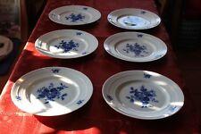 Hutschenreuther Porzellan 6 Speiseteller Blaue Rose