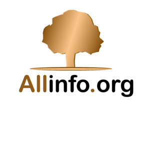 Allinfo.org — (since 1998) 23 YEAR OLD Domain Name! Dictionary, Encyclopedia etc