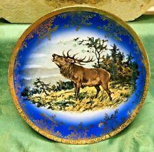 STW Bavaria Cabinet Plate Portrait Elk Germany Stag Blue With Gold Trim