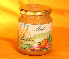Miele di Millefiori 1kg italiano