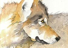 """ACEO Giclee PRINT watercolor 2.5"""" x 3.5"""" JOURNEY first California wolf"""
