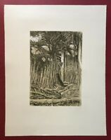 Herbert Jäger, Wald, Farblithographie, 1978, handsigniert und datiert