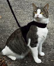 SOFTWALK CAT HARNESS, SOFT FABRIC, SMALL-SUIT GROWING KITTEN, BLACK