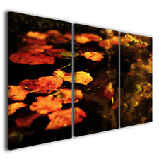 Quadri moderni natura Sospese nell'acqua foglie colorate stampe su tela