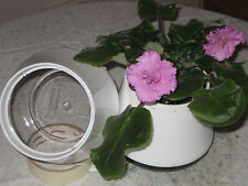 Plastic Flower Plant Self Watering Pots Boxes Ebay