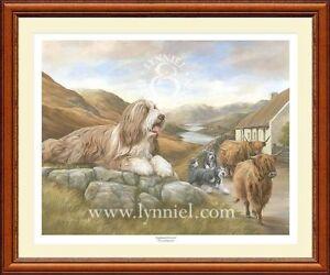 BEARDED COLLIE beardie dog print 'Highland Drovers'