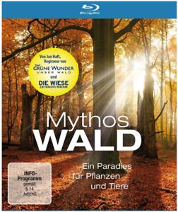 Blu Ray > Mythos Wald < NEU