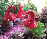 Fairy Garden Toadstools and Mushrooms by Fiddlehead Miniature Fairy Gardens