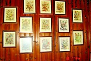 Colonial Williamsburg Floral Print of the Month {all 12 months} - -