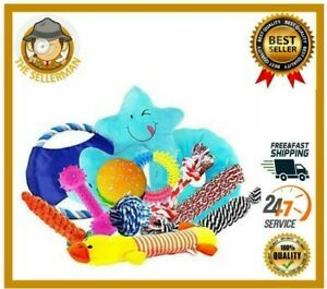 Dog Rope Toys Best  Aggressive Chewers Toys for Teething Puppy 12 pcs Gift Set