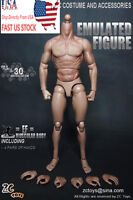 "ZC Toys 12"" Muscular Figure Body fit  For 1/6 Scale Wolverine Body USA STOCK"