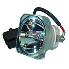 Lutema Projector Lamp Replacement for Mitsubishi XD435