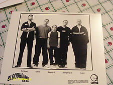 Bloodhound Gang 1999 Publicity Photo