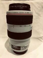 Canon EF 70-300mm 1:4-5.6 L IS USM