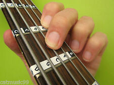 5-STRING BASS GUITAR FRETBOARD NOTE LABELS Learn Fret Stickers + Online Lessons