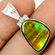 Genuine Canadian Ammolite  925 Sterling Silver Pendant Jewelry SP209344