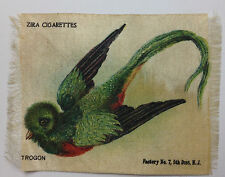 New listing Trogon Rare Bird Zira Cigarette Silk 1900s Turn Century