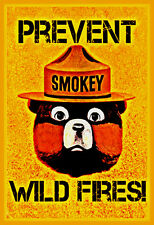 "PREVENT WILD FIRES SMOKEY BEAR METAL SIGN 8""X12"" FOREST SERVICE CLASSIC IMAGE"
