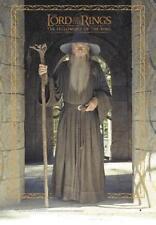 Herr der Ringe Poster Gandalf - Lord of the Rings Film Plakat - 68,5 x 98 cm