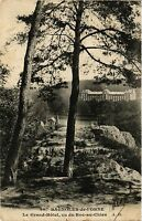 CPA   Bagnoles- de- l'Orne -Le Grand-Hotel , vu du Roc-au-Chien    (355108)