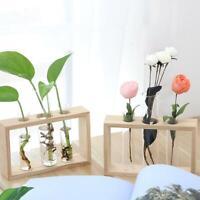 Wooden Frame Terrarium Vase Hydroponic Plant Bonsai Flower Pot Home Office Decor