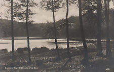 Ostseebad Sellin, Schwarz. See, nicht gelauf. ca 1930, sehr gut erh., siehe Scan