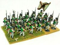 Perry Miniatures Napoleonic 28mm Infantry Models Unit Bundle Painted & Based