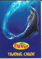 "PROMO CARD ""FLIPPER """