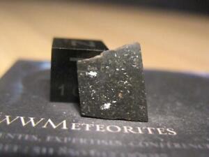 Meteorite NWA 8598 - Schock darkened L6 chondrite...