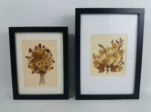2 Reframed Vintage Dried Flower Pictures Country Cottage