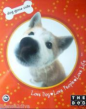 School Akita The Dog 2 For $8.99 2 Pocket Folders The Dog Artist Collection