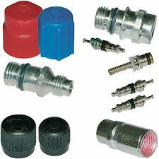 A/C System Valve Core and Cap Kit MT2902
