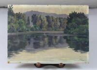 A2/ Landschaftsbild auf Holz gemalt - Julius Schmid Biberach signiert 34x25 /S61