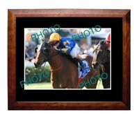 FIELDS OF OMAGH 2006 COX PLATE WIN LARGE A3 PHOTO