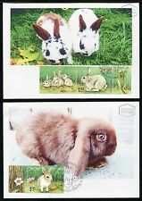 Israel Domestic Animals offspring Cat Rabbit Poultry Eggs  Maxi Mximum Card 2010