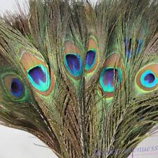 Großhandel wunderschön natürlich Pfauenfedern Augen 25.4-102cm//25-100cm E