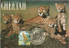 Cheetah Family Australian Zoos Maximum Card Postmarked on First Day of Issue