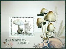 2017 MS #1 poisonous mushroomsfungi400168