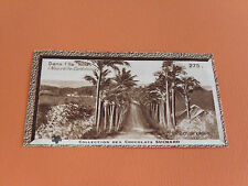 CHROMO PHOTO SUCHARD 1930 COLONIES NOUVELLE-CALEDONIE OCEANIE ILE NOU