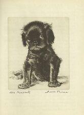 King Charles Spaniel - Vintage Dog Print - 1936 Diana Thorne