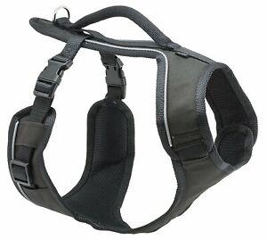 PetSafe EasySport Harness Large Black for Dogs