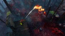 Divinity Original Sin II 2 Definitive Edition Xbox One Xb1