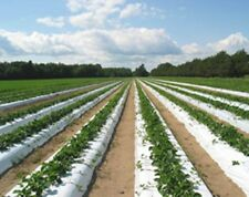 "Plastic Mulch Row Cover 36""x2400ft 1.25mil White & Black Weed Barrier Strawberry"