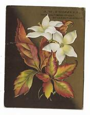 Old Trade Card JW Frizzell Baltimore MD Mantel & Pier MIRRORS Leaves Floral