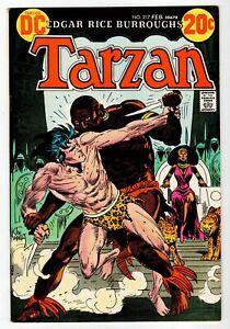 TARZAN #217 - Kubert Cover & Art - NM 1973 DC Vintage Comic