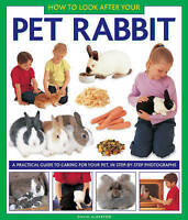 How to Look After Your Pet Rabbit: A Practical Guide to Caring for Your Pet, in